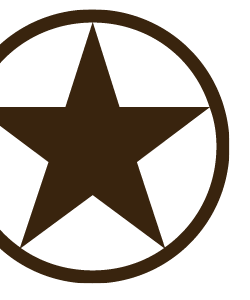 Icon_star_lg